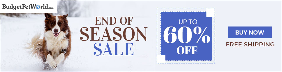 Get Up to 60% off + Free Shipping on this End of Season Sale. Use Code:-WINSALE