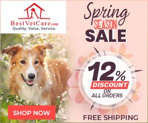Spring Season Sale 2021