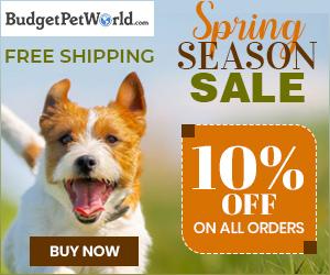 Spring Season Sale!