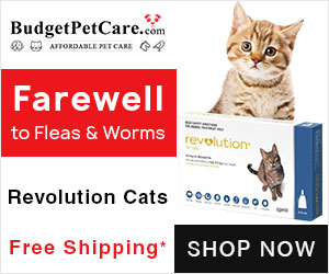 Cheapest Revolution Cats Online