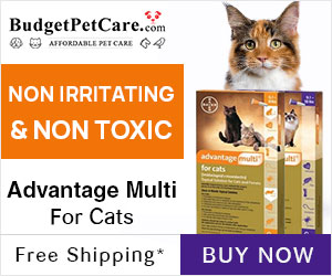 Special Offers on Advantage Multi Cats