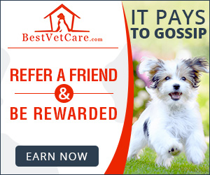 Refer A Friend and Earn Reward